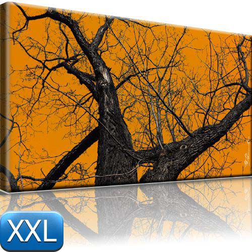 horror bild auf leinwand baum natur bilder 100x55 xxl ebay. Black Bedroom Furniture Sets. Home Design Ideas