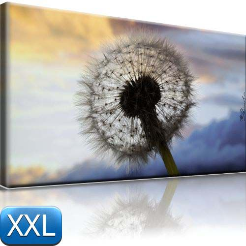 l wenzahn leinwand bild gerahmt pusteblume 100x55cm xxl ebay. Black Bedroom Furniture Sets. Home Design Ideas