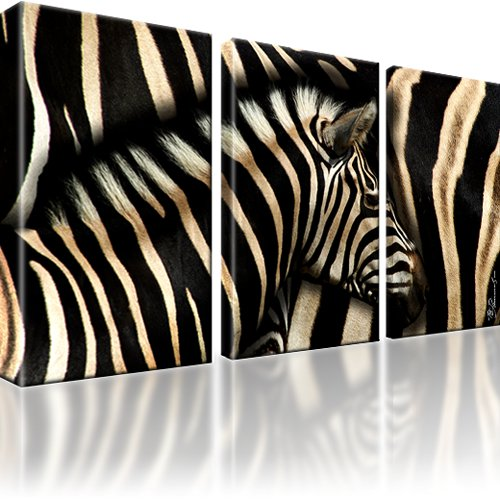 xxl zebra afrika bild bilder wandbild kunstdruck ebay. Black Bedroom Furniture Sets. Home Design Ideas