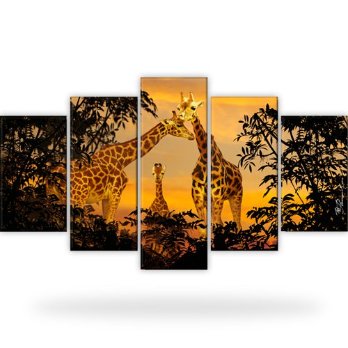 giraffen afrika natur tiere bild bilder wandbild. Black Bedroom Furniture Sets. Home Design Ideas